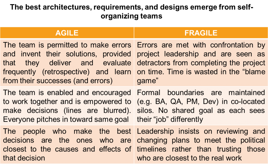 Agile let the team shine